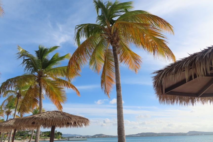 Planning for future travel. What accommodations should you be bookingnow?